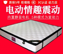 唯顶装饰公司智能多功能电动床垫-1800mm*2000mm直销供应德州智能家装报价2800.00元